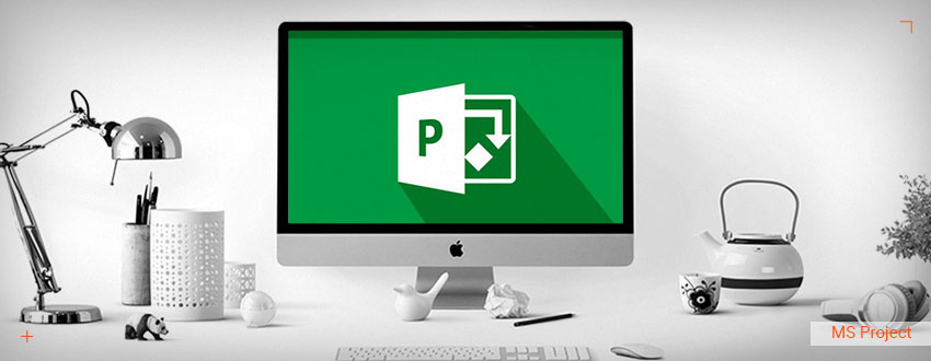 Tutorial Microsoft Project: Tipuri de view-uri