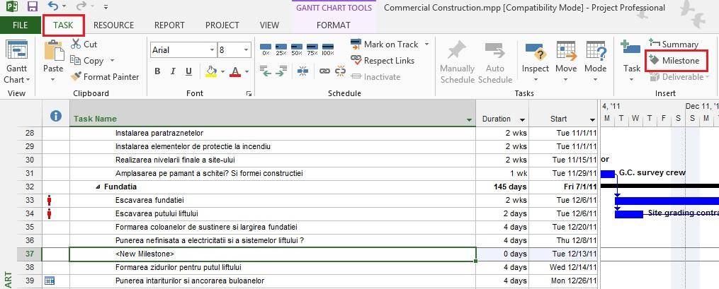Milestone Chart in Microsoft Project 2_milestone_cipriancucu.ro