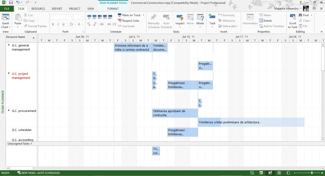 Tutorial Microsoft Project Team Planner View