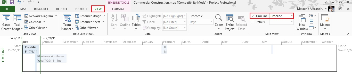 Tutorial Microsoft Project Timeline View