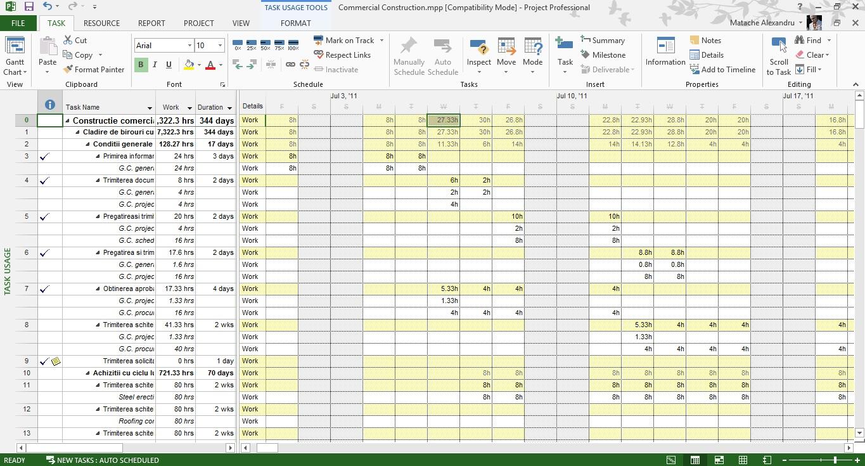 Tutorial Microsoft Project Resource Usage