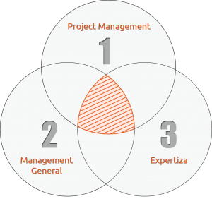profilul-project-manager-1