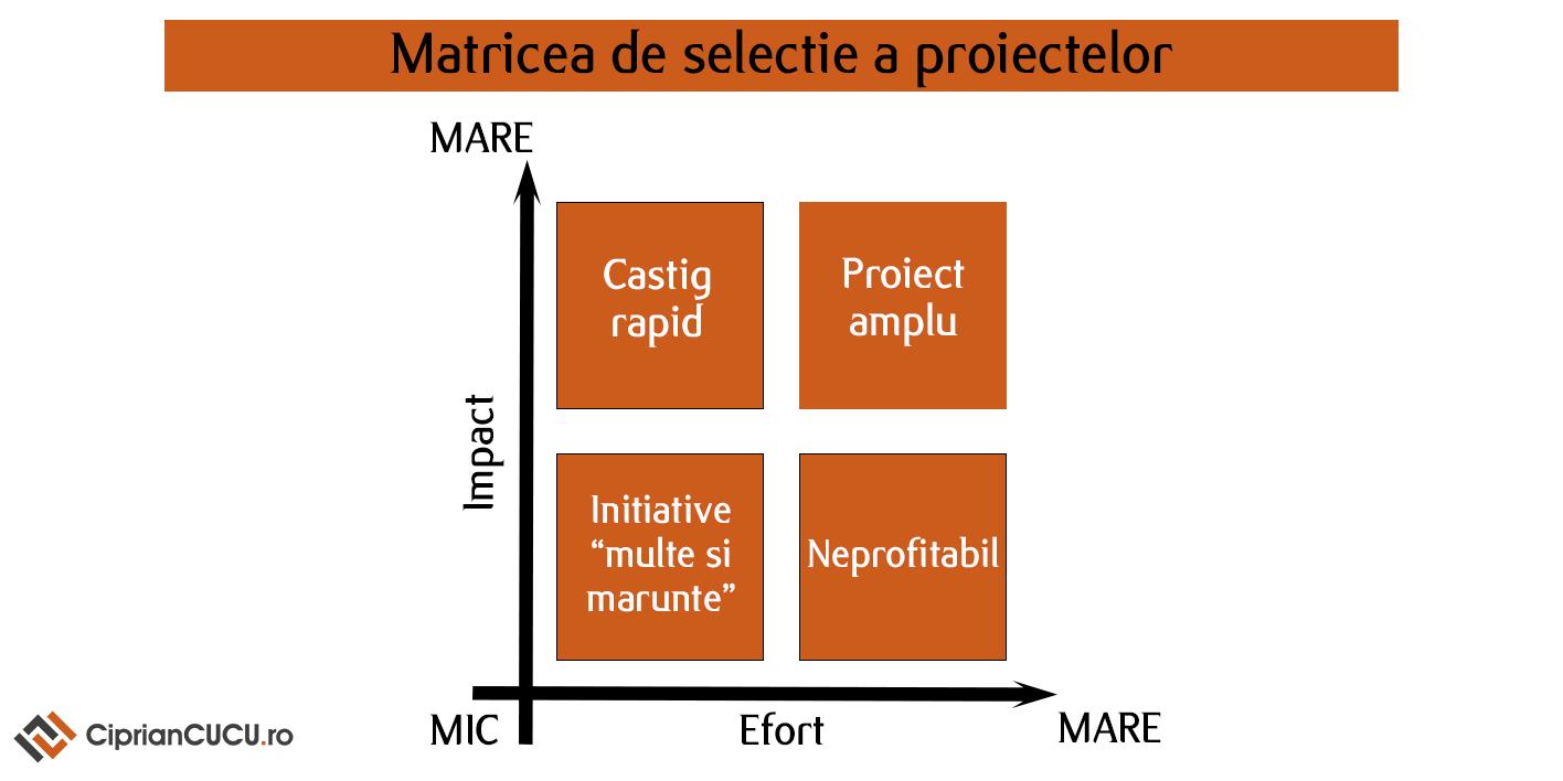 Matricea de selectie a proiectelor