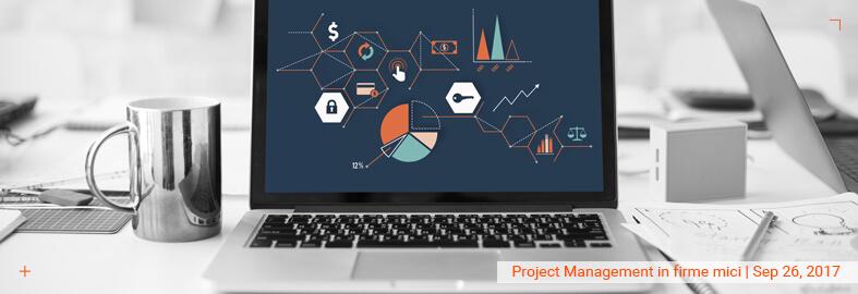 Project Management in firme mici – instrumente, probleme, retete si solutii