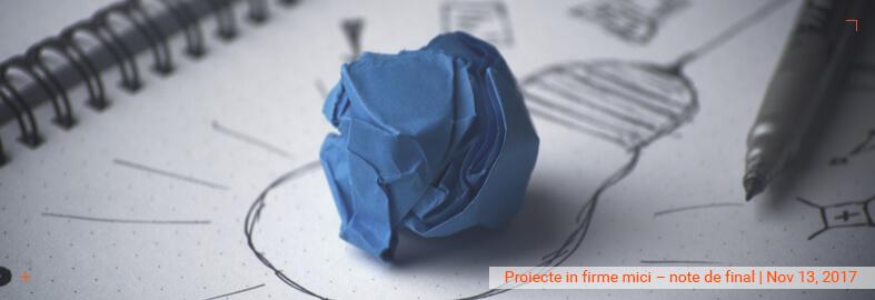 Proiecte in firme mici – note de final