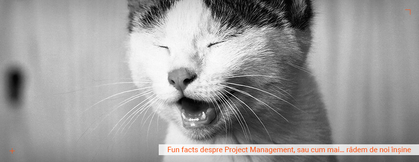 Fun facts despre Project Management, sau cum mai… radem de noi insine