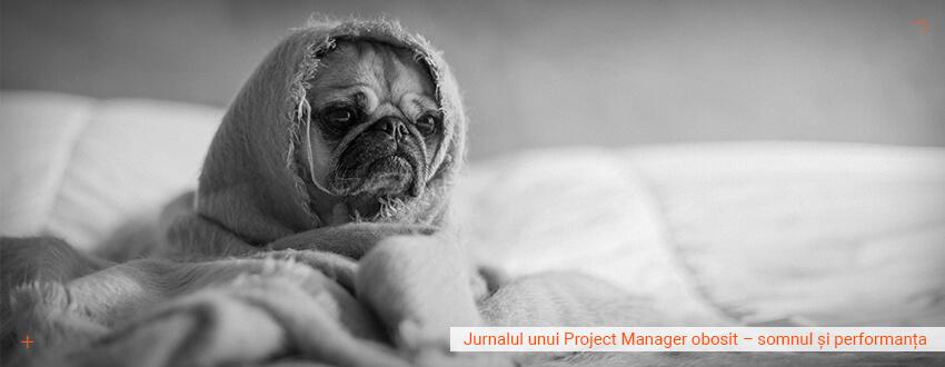 Jurnalul unui project manager obosit – somnul si performanta