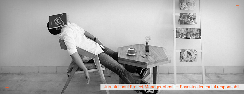 Jurnalul unui project manager obosit – Povestea lenesului responsabil
